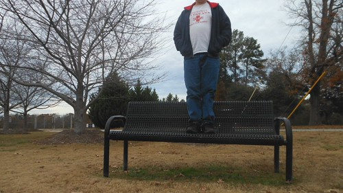 Bench Monday: Leafless Trees Edition