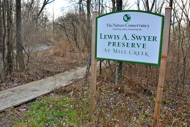 Nature Conservancy Lewis A. Swyer Preserve