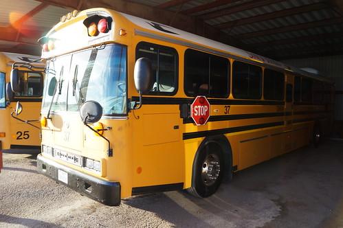 sonora bluebird schoolbus broncos activitybus allamericanre
