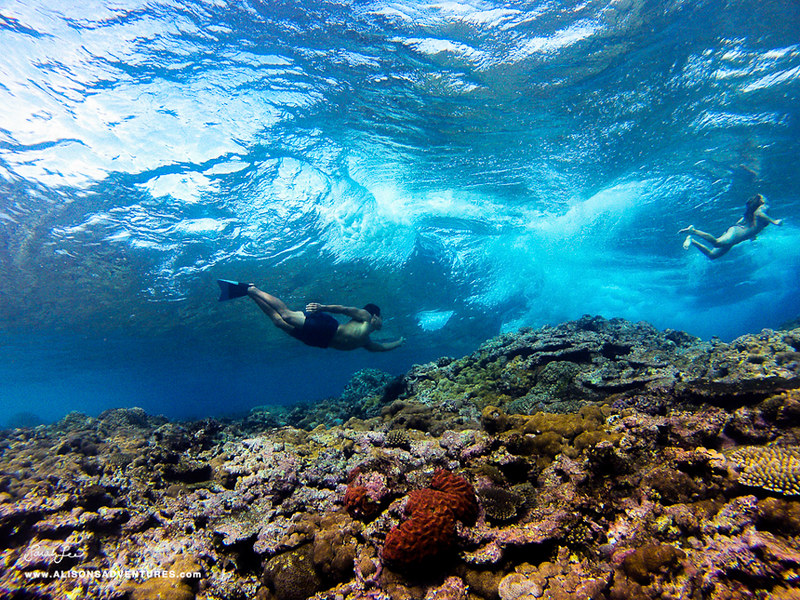 alison_ikaika_fiji_underwater2.jpg