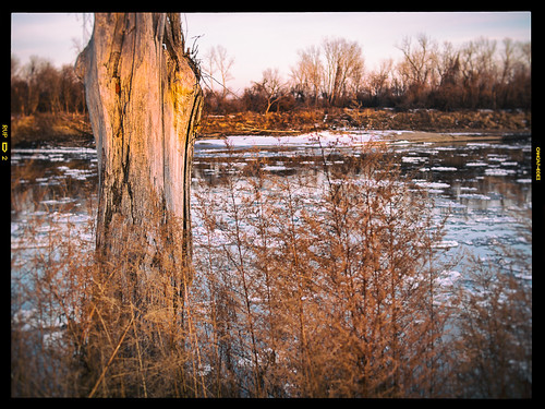 ice floes on the missouri