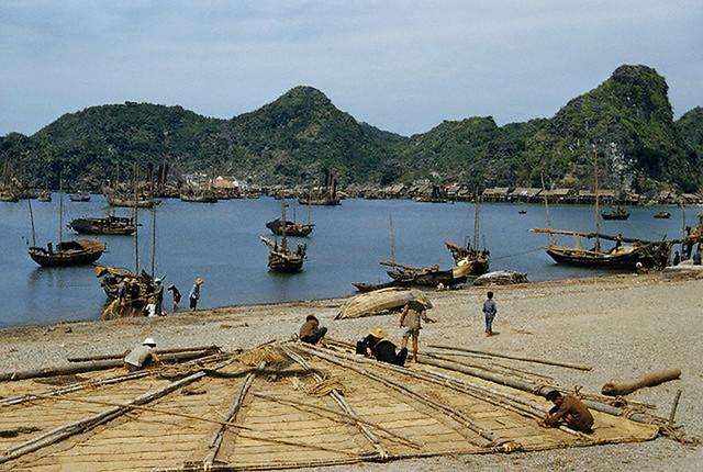 Vietnam 1952 - Những người Hoa tỵ nạn làm một chiếc buồm trên bãi biển