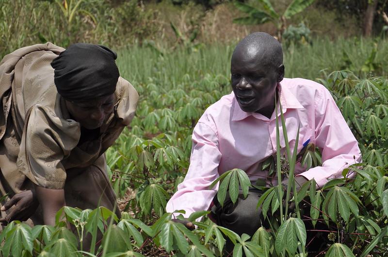 CCAFS East  Africa Hoima, Uganda Site Visit