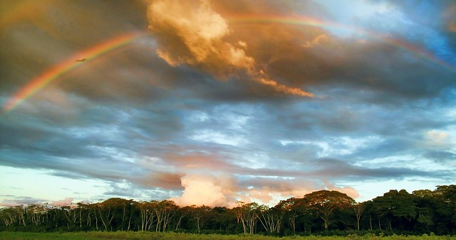 Amazon Jungle in Peru with Rainbow