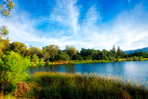 ca plants nature water mountains outdoor lake clouds california santaclaracountyparks vasonalakecountypark losgatos recreational sky park trees grass shore santacruzmountains unitedstates us
