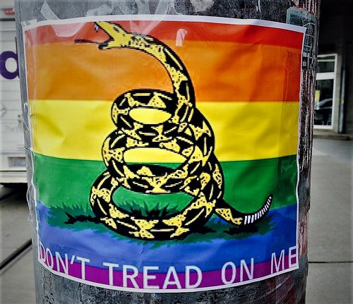 "As Seen on the Hill:  Rainbow Flag/""Don't Tread on Me"" Flag Mashup"