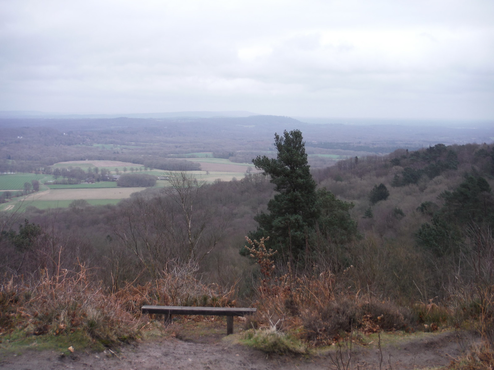 Gibbet Hill, Northerly Views SWC Walk 144 Haslemere to Farnham