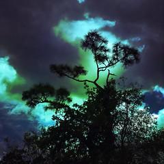 Cloudy day splash #ankuriview #iphoneography #shotoniphone6s #mobilephotography #beautiful #nature #hipstamatic #dailylife #cloudporn #florida #sky #instadaily #iphone6s