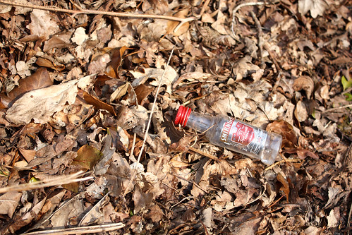 Abandoned Smirnoff bottle