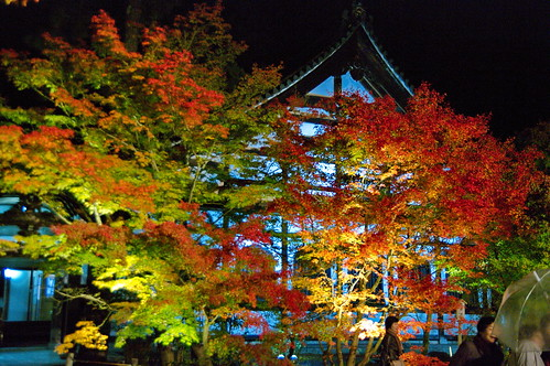 【写真】2012 紅葉 : 永観堂/2020-05-30/IMGP6239