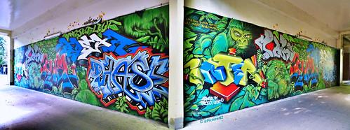 newzealand christchurch streetart tree art leaves campus graffiti gorilla tag monk tunnel canterbury walkway jungle freak nz ape duel southisland kingkong phase tagging rasp infer cpit dcypher projectlegit christchurchpolytecnicinstituteoftechnology