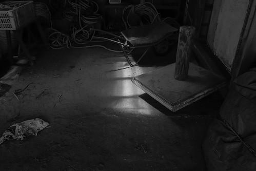 niigata monochrome 45