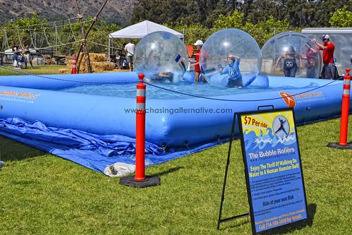 Bubble Roller