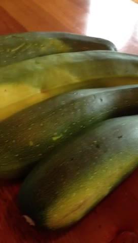 Mr. Hand likes zucchini