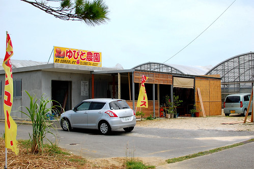 2013okinawa_152