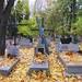 Rakowicki War Cemetery, Krakow