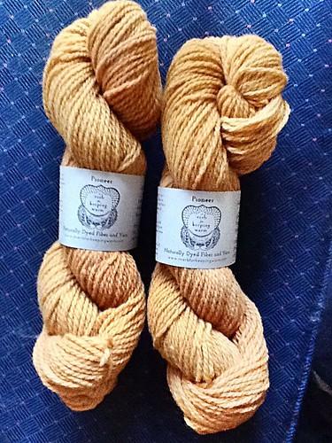 Pioneer yarn