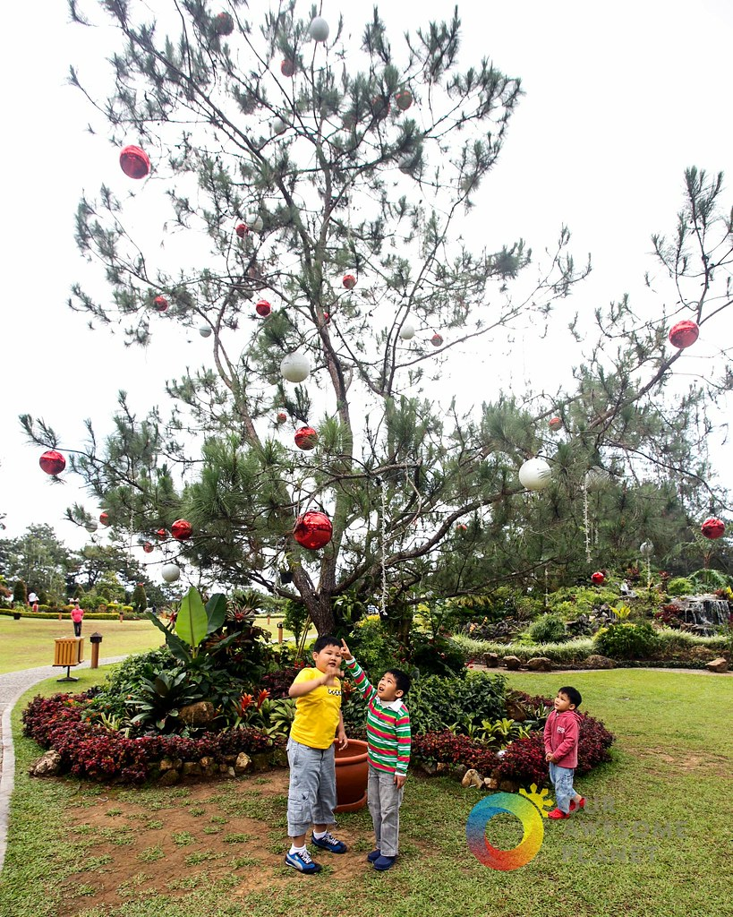 A MANOR at Camp John Hay Baguio Christmas! (A Photo Essay) @TheManor_CJH
