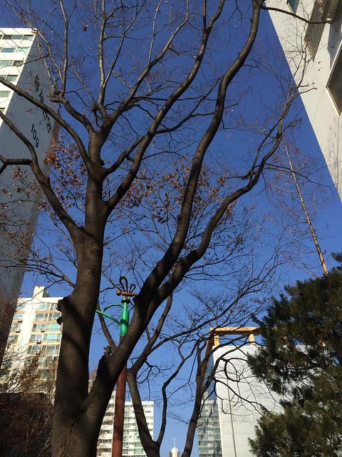 Seoul, Hongjae-dong