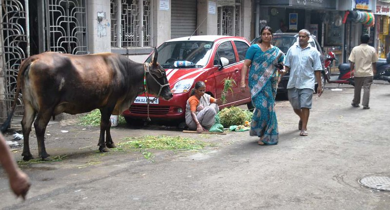 01 Mumbai