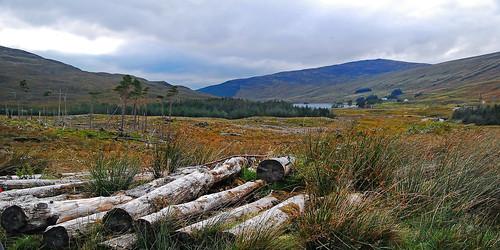 uk scotland logs highland fortwilliam oldmilitaryroad lochanlunndabrha