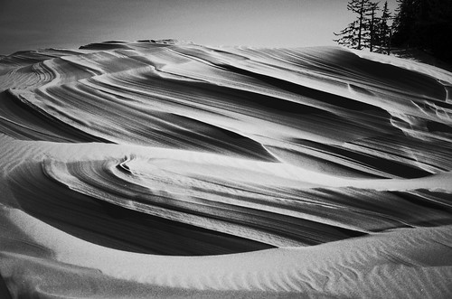 wind sculpted dunes