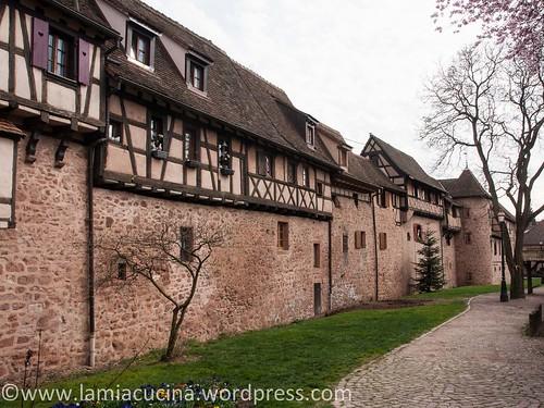 Alsace14 2014 03 18_3503