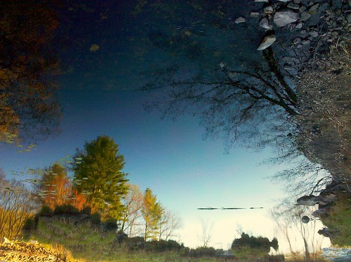 trees sky usa reflection water leaves pine river landscape spring pond oak rocks stream upsidedown newhampshire surreal pebbles shore wetlands brook derry surreallandscape