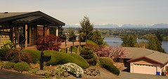 Living with a view and an outside deck, houses, black mail box, bushes, trees, Lake Forest Park, Lake Washington, Cascade Mountain Range, Seattle, Washington, USA