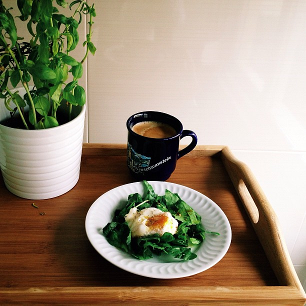 Egg in a bed of spinach. Good morning! Long day ahead!