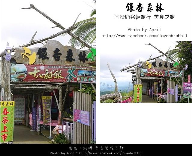 [南投鹿谷]銀杏森林–絕美視野的景觀餐廳