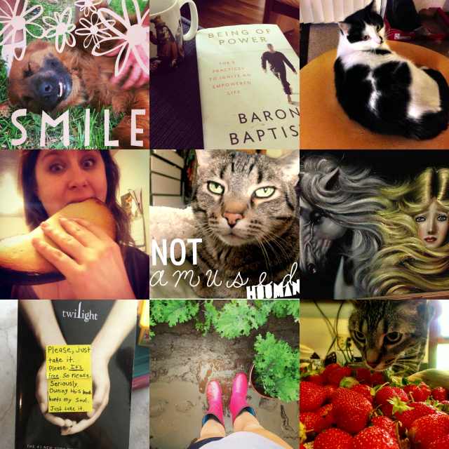 june instagram collage