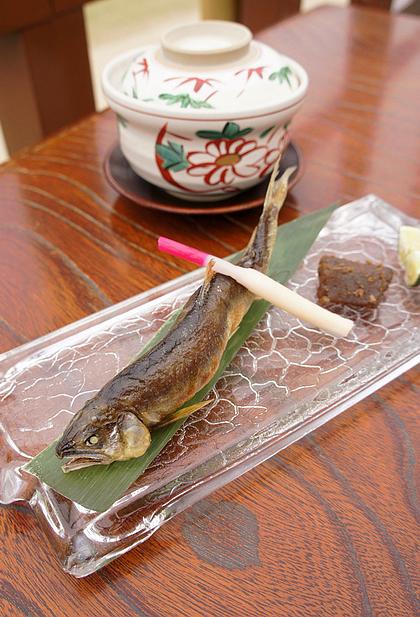 京都美食納涼床21