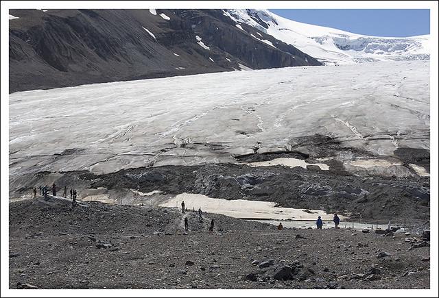 Columbia Icefield 9
