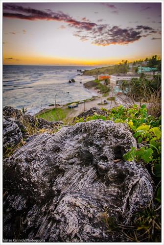 sunrise barbados tentbay