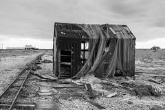 Derelict shed, Dungeness