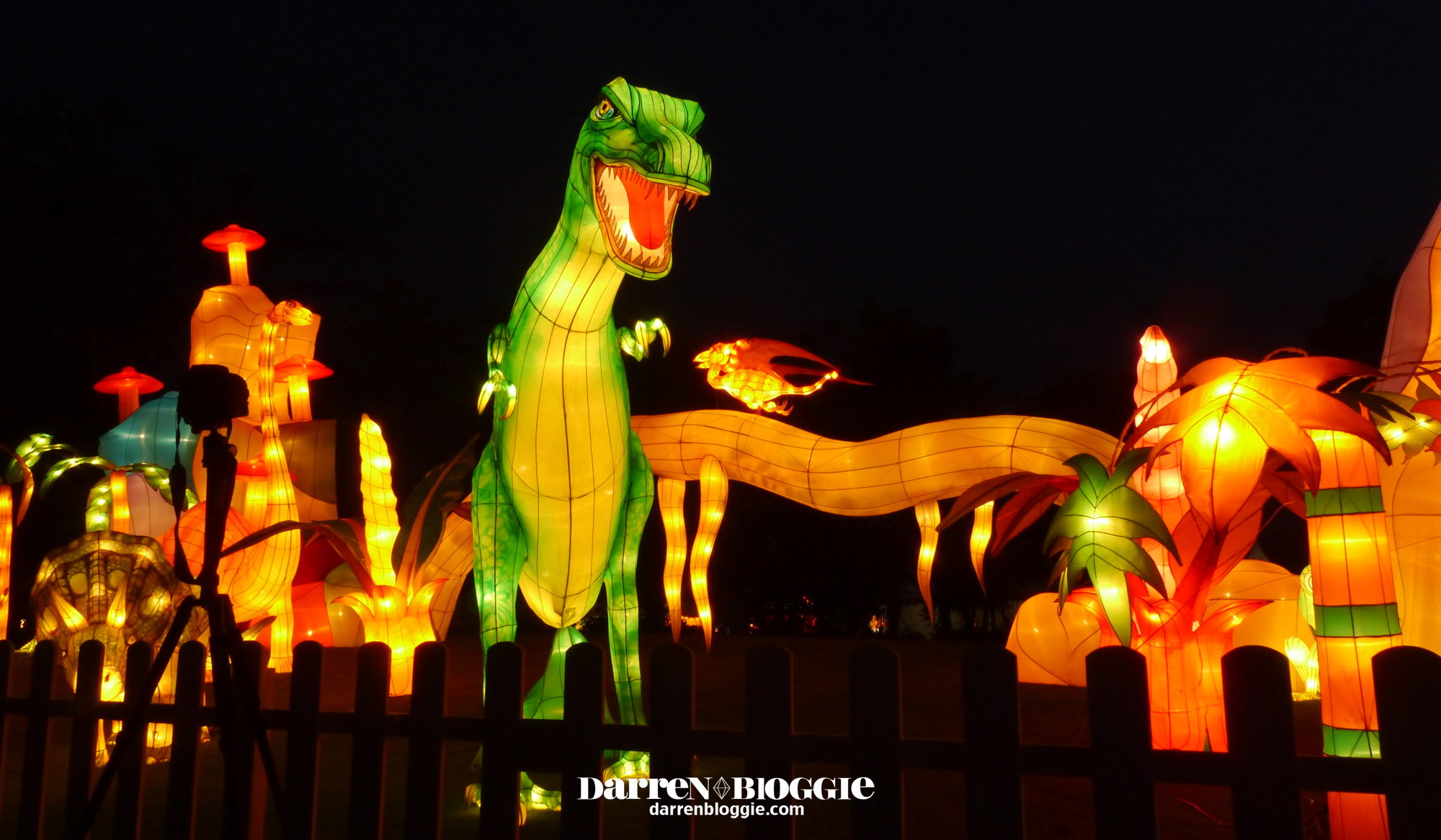 Mid Autumn Festival at Gardens by the Bay 2013 by darrenbloggie