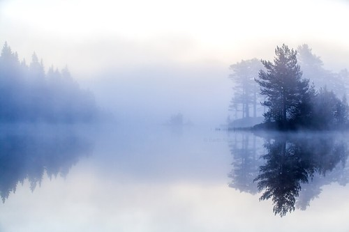travel trees sky mist lake reflection tree nature water norway horizontal misty fog forest canon reflections landscape outdoors photography norge woods quiet natur foggy earlymorning nopeople calm september reflect silence serenity stillness vann scenics tåke quietness morningmist mists drammen trær quietly colorimage beautyinnature 2013 nedreeiker morgendis vrangla