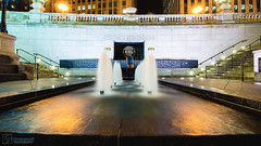 Chicago Remembers: {Veterans Day 2013}