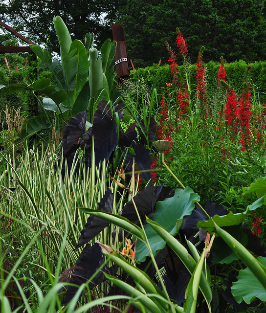 Student Exhibition Garden (11)