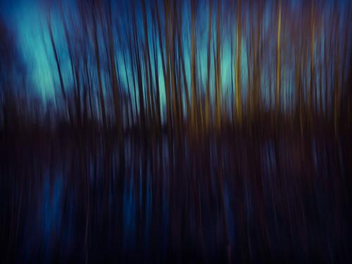 trees winter sunset water reeds landscape crossprocessed lowlight flood dusk olympus oxford grasses footpath riverthames isis oxfordshire icm 2014 portmeadow floodplain m43 zd 714mm fiddlersisland intentionalcameramovement ukfloods omdem1