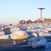 Coney Icebergs