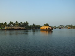 House boats, Kerala backwaters, India