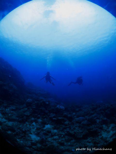 水中は穏やか&青い~♪
