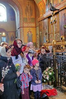 Литургия в Софийском соборе 495