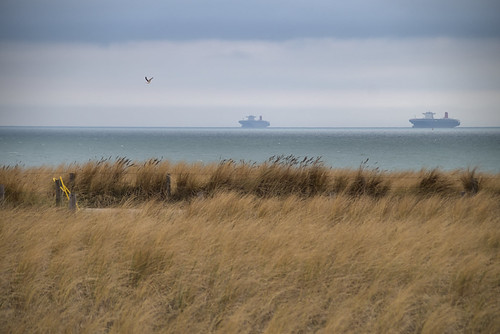 katwijk zee sea ship ships marram grass barbed wire clouds winter slta58 coast seagull gull relax seranity serene peacefull view vista sigma18300mm katwijkaanzee netherlands