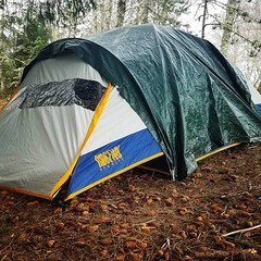 Cam #tent #camping in #Oregon  Staying warm in a #Kelty and listening to the coyote, frog, and owl for wisdom.  #animals #outdoors #follow Survival Bros dot com