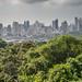 Panama City from Metropolitan Park(Ian Talboys)