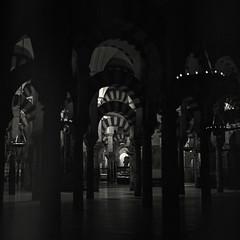 Mosque of Cordoba (Hasselblad 503, Kodak Tri-X 400)