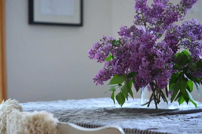 spring flowers_554